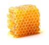 wosk pszczeli.png